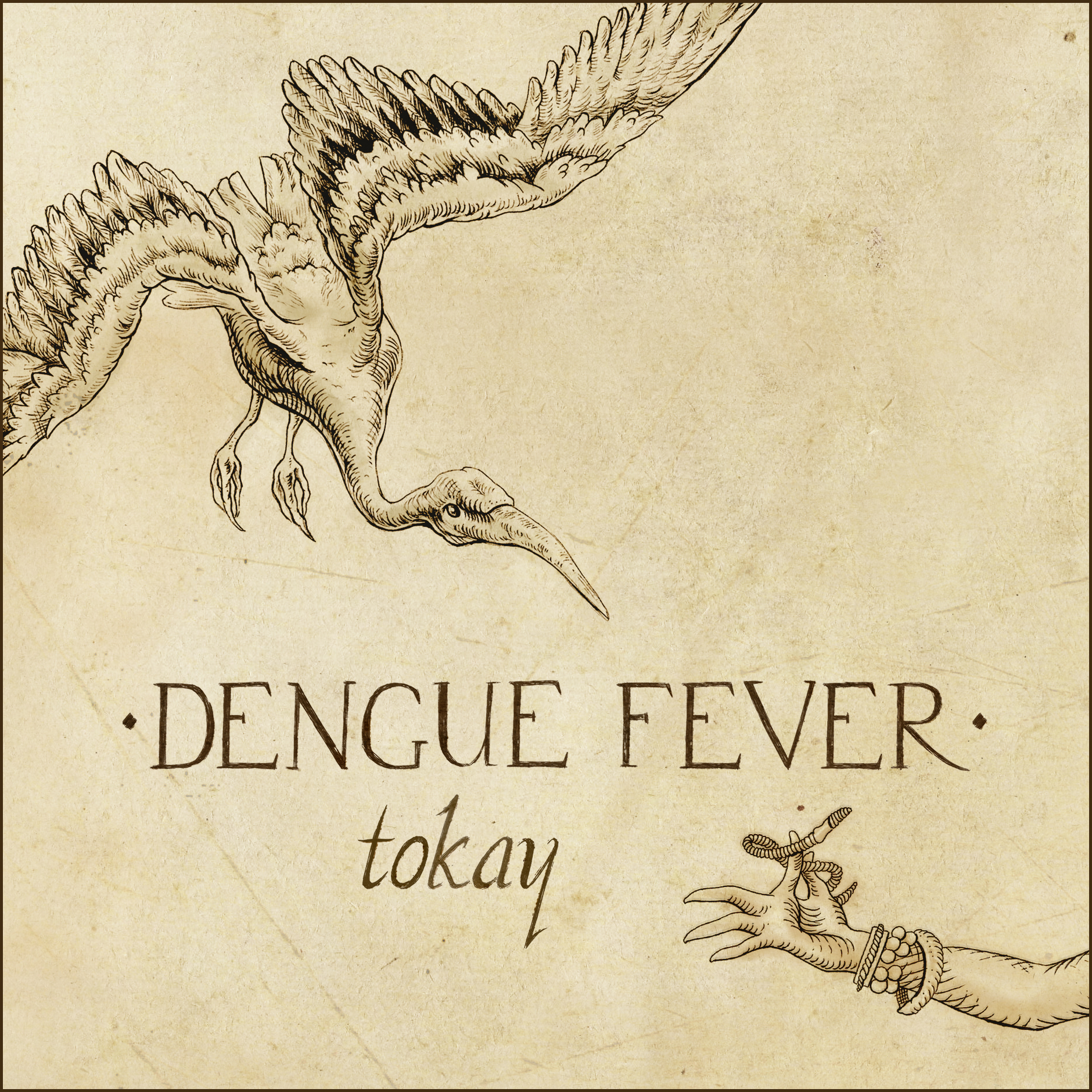 denguefevr_tokay_single
